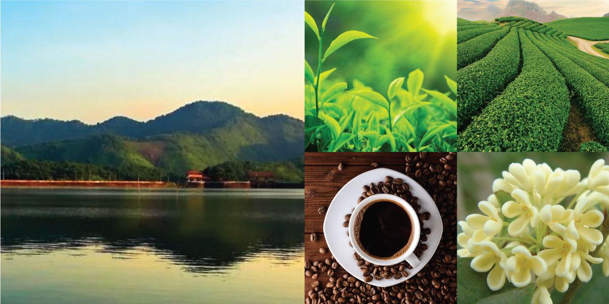 moc-huong-cafe-2